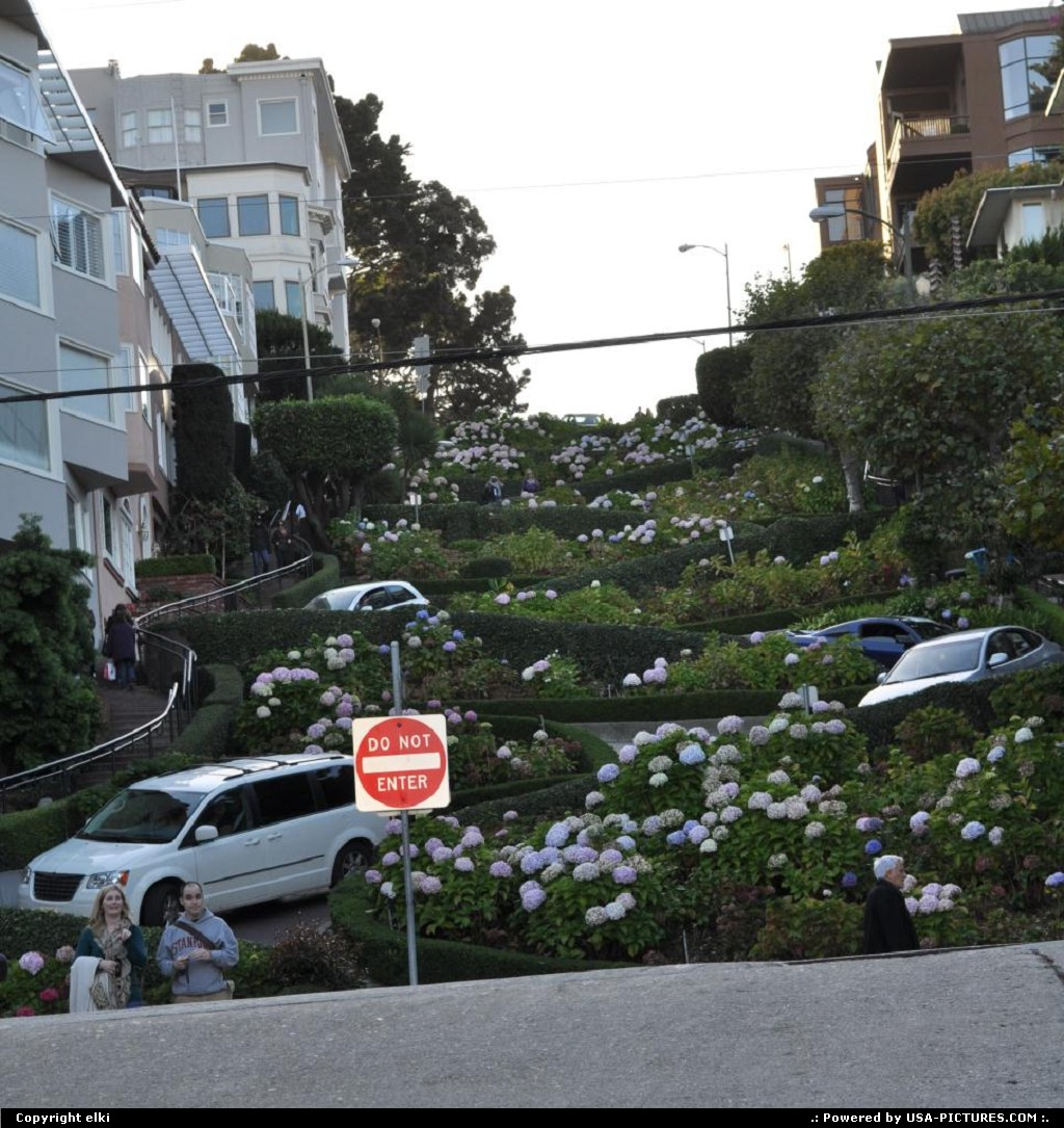 Picture by elki: San Francisco California   lombard street