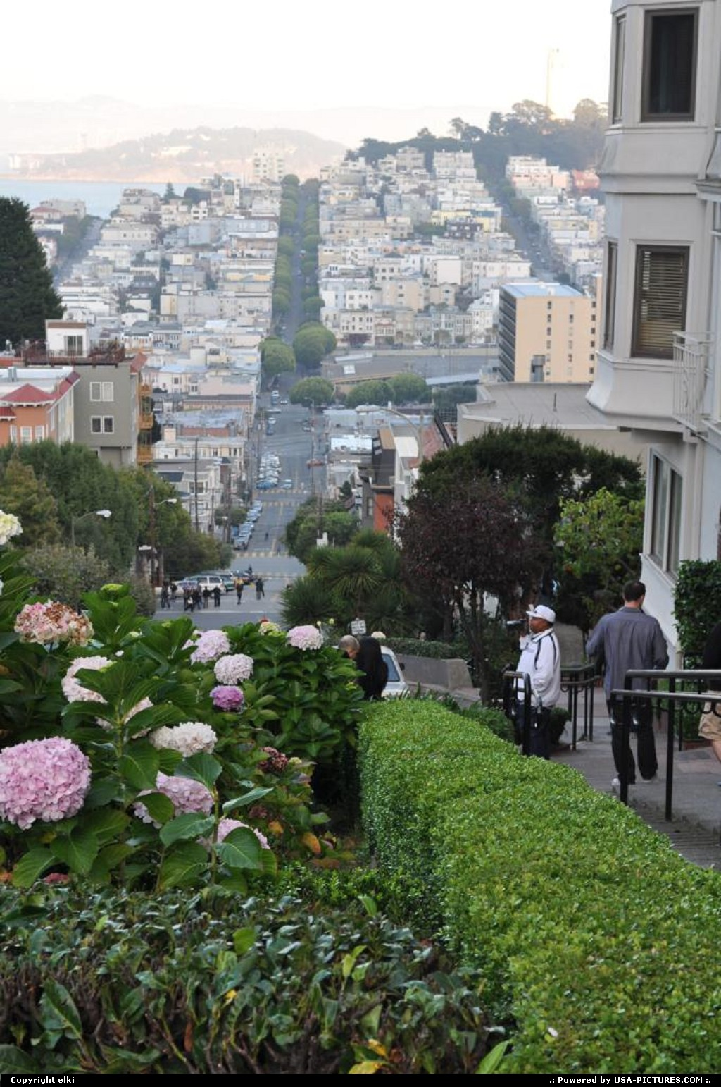 Picture by elki:San FranciscoCaliforniasan fransisco california lombard street