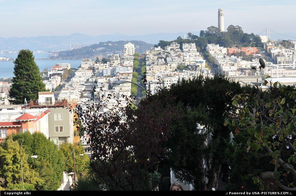 Picture by elki:San FranciscoCaliforniacoit tower, lombard street, san francisco