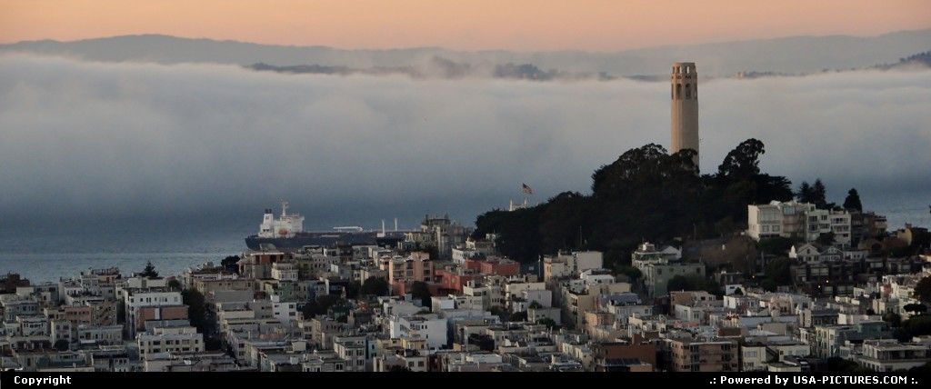 Picture by WestCoastSpirit:San FranciscoCaliforniasfo, sf, coit tower, transamerica, pier 39