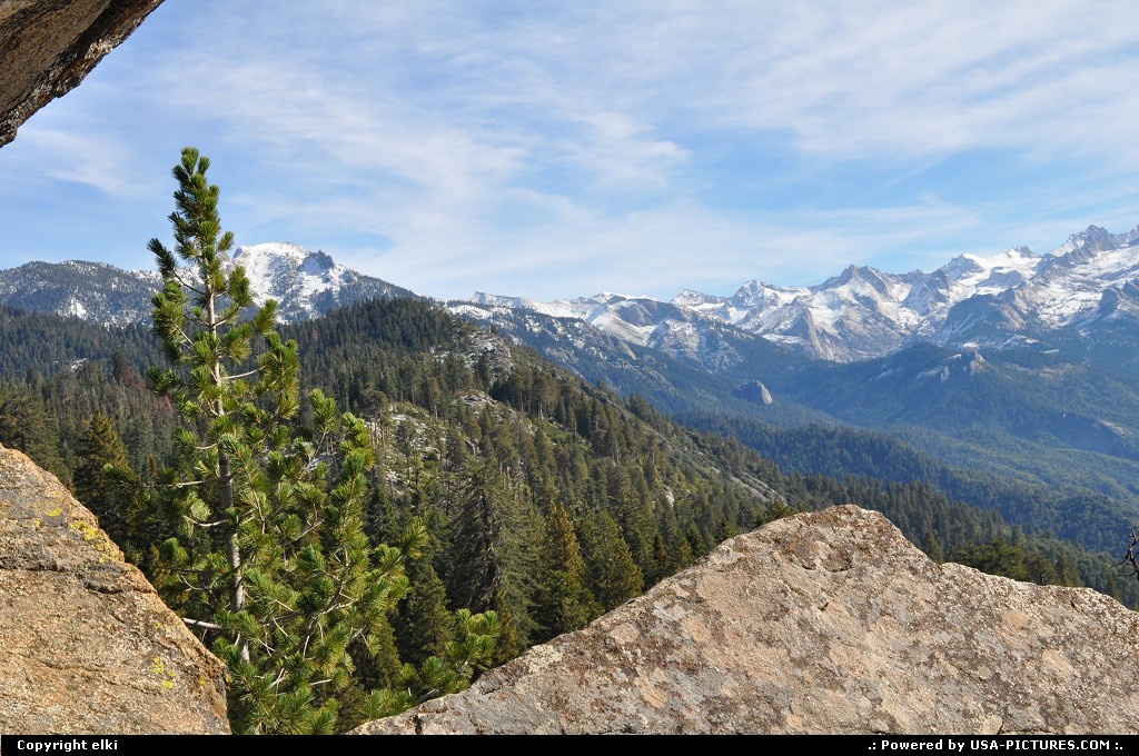Picture by elki:  California Sequoia  sequoia national park moro rock