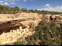 The impressive Cliff Palace dwelling. One of the largest, if not the largest in the world. Approximately 150 rooms have been identified but it's virtually impossible to have a accurate figure here. The place is just massive and includes pithouse, kivas, and more