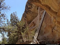 Mesa Verde : Climb that impressive ladder and you'll have the privilege to visit Balcony House. Probably not the easiest trail in the park, but definitively my favorite!