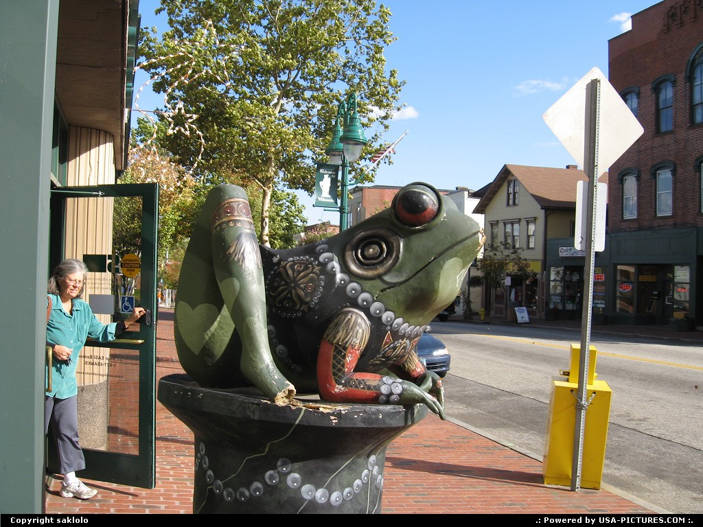 Picture by saklolo:Not in a CityConnecticutFrog Guarding Bank