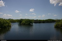 Everglades : Boat riding in the parc