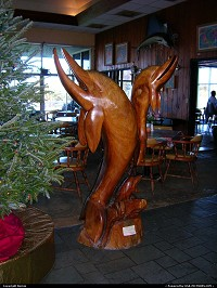 Hors de la ville : Wooden dolphins in this restaurant on Overseas Highway, heading to Key West
