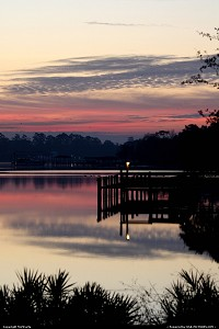 Photo by MnMCarta | Jacksonville  sunrise,geese,nature,light,sillouette,birds,geese,canadian,river,