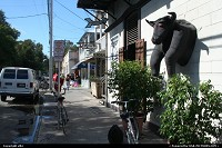 Key West : The bull bar, at duval street. Shopping and fun go to duval street