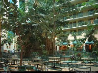 Embassy Suites Miami Airport, inside! A great place to stay.