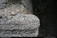 Coquina is the shellstone building material that forms the very foundation on which St Augustine is built. Here zoomed in the