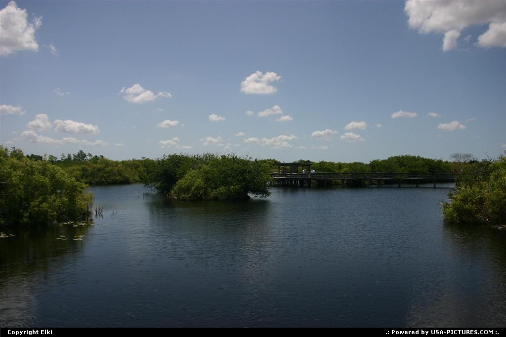 Picture by elki:  Florida Everglades  boat