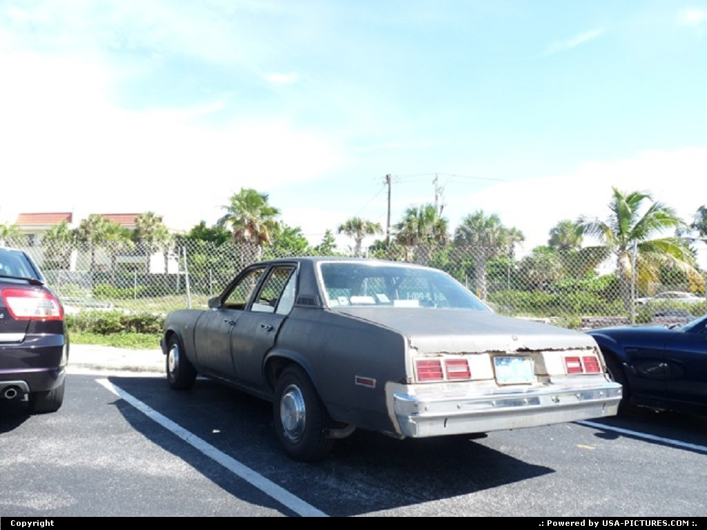 Picture by Djipi:Daytona BeachFlorida