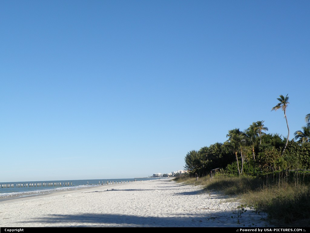 Picture by Bernie: Naples Florida
