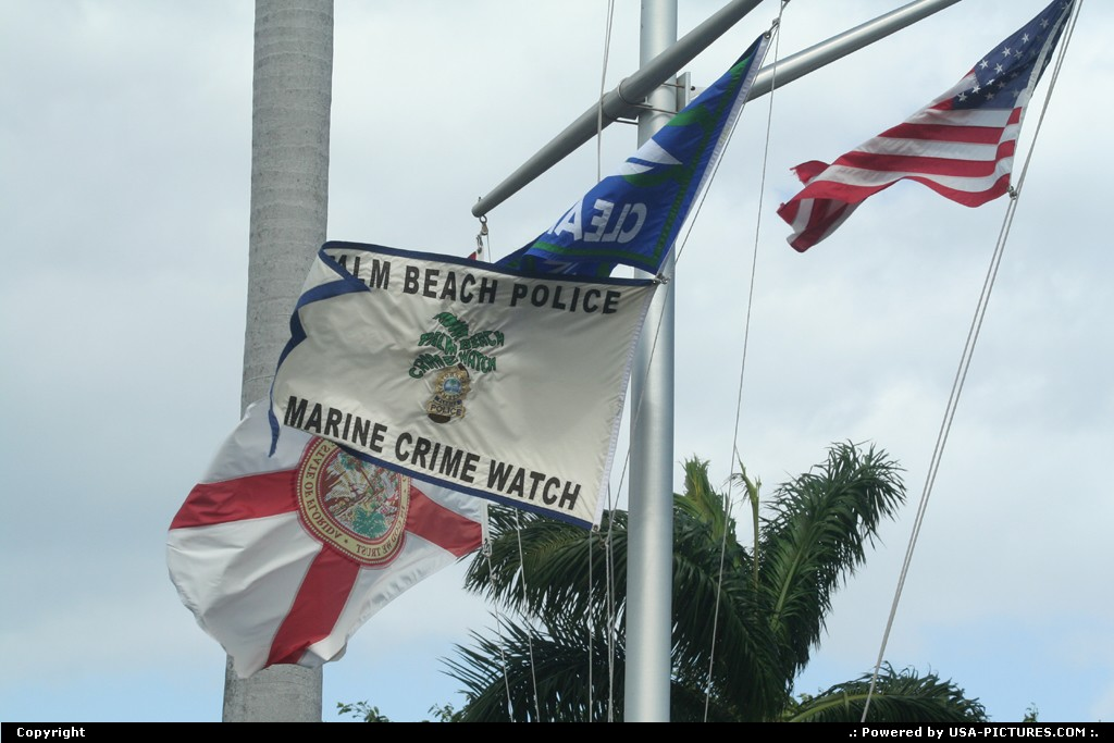 Picture by elki: Palm Beach Florida   Flag palm beach