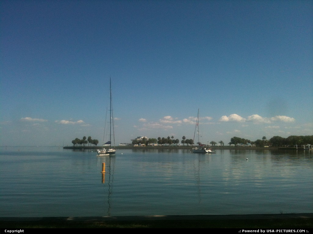 Picture by Bernie: Saint Petersburg Florida   Harbor