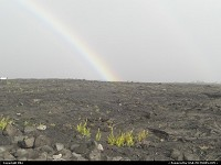 Photo by elki |  Hawaii Volcanoes lava, flower, raimbow