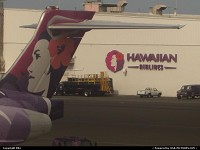 Photo by elki | Honolulu  orchydea, beoing, 717, hawaiian airlines