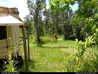 Hawaii, yurt off the grid on a fruit farm in the Puna district of the Big Island of Hawaii on July 17, 2006 about 2:00 pm