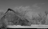 Turn of the century barn on a frosty day, black and white