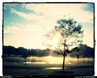 Wheaton : morning fog