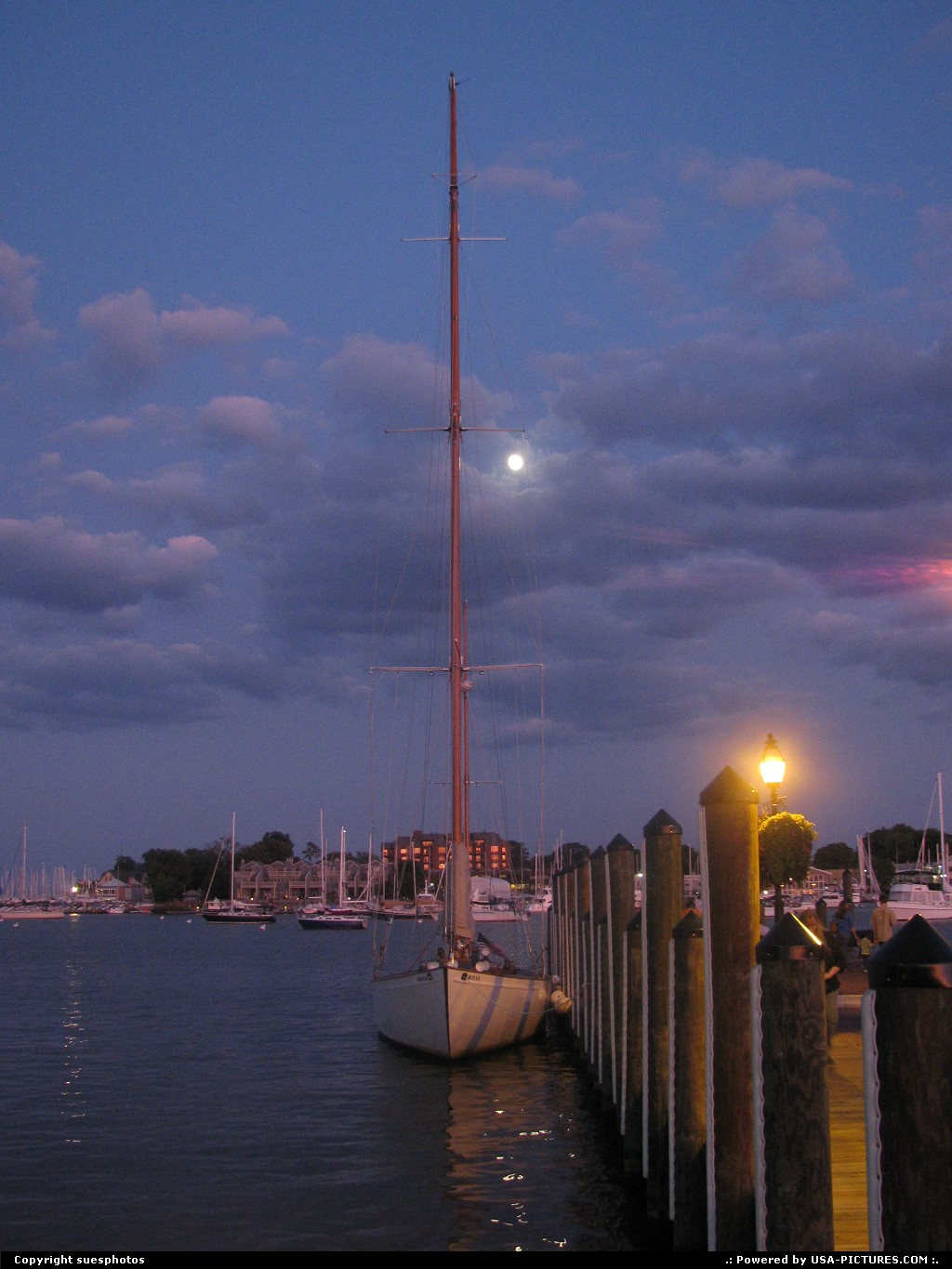 Picture by suesphotos: Annapolis Maryland