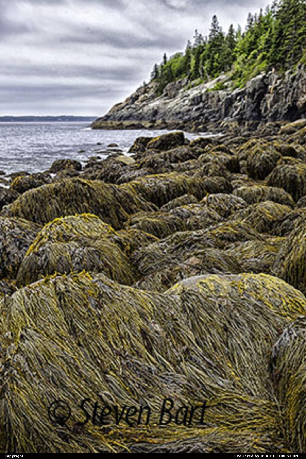 Picture by Steve Bart:Bar HarborMaineHunter Beach, Acadia National Park