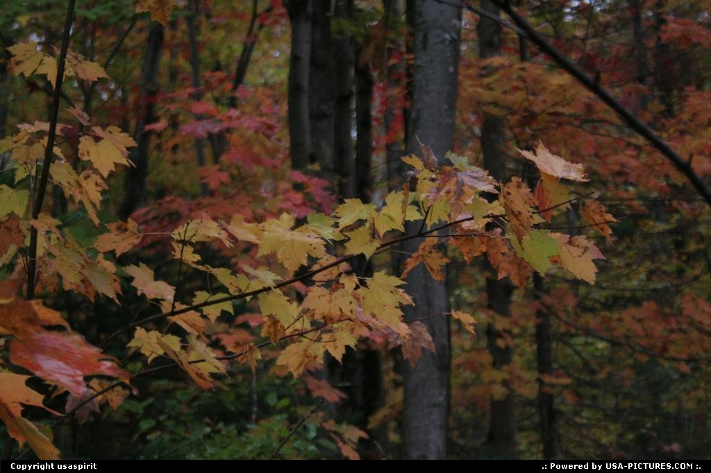 Picture by usaspirit:Not in a cityNew-HampshireFall season, maine