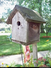 Birdhouse at my grandparent's house.