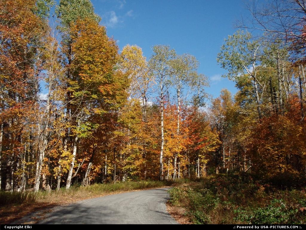 Picture by elki:New-Hampshirefall, colors