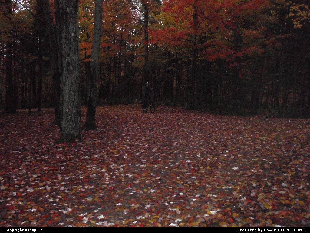 Picture by usaspirit:Not in a cityNew-HampshireFall season, forest in new hampsire