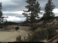 Lake Tahoe : beach at lake tahoe, surrounds with beautifuls trees, white sand...