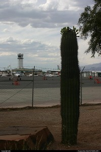Photo by elki | Las Vegas  airport, cactus, planes, plane