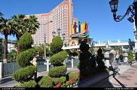 Las Vegas : Venetian Hotel, Treasure Island afar and, overall, gorgeous fall weather. Viva Las Vegas!