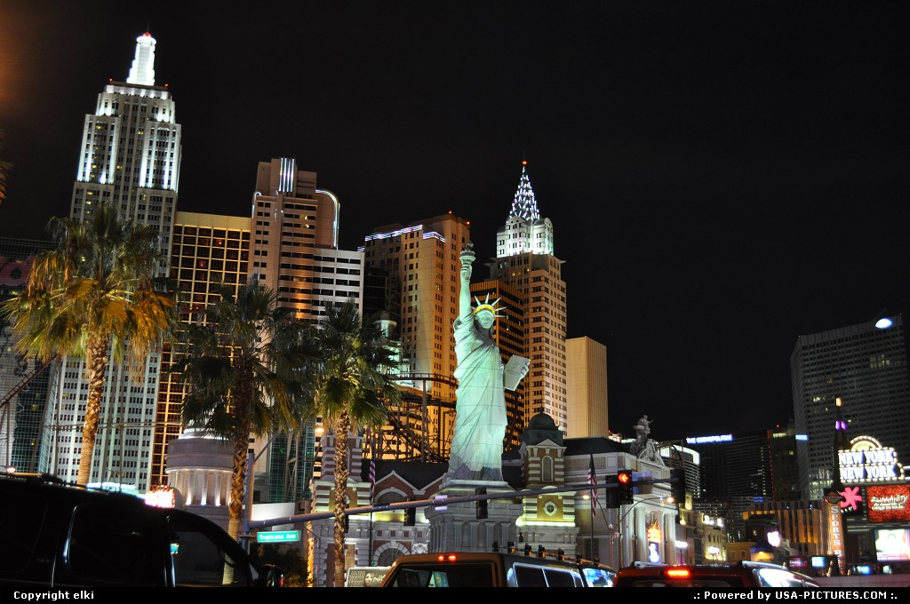 Picture by USA Picture Visitor:Las VegasNevadaLas vegas strip. New york-new york hotel