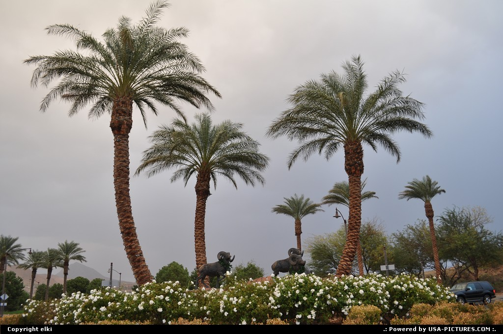 Picture by elki:Not in a CityNevadaLas vegas beach