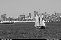 Photo by tiascapes | Brooklyn  Brooklyn, New York, New York Bay, boat, sailboat