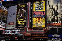 New York : Time Square lighting and broadway shows ads in the heat of July. The whole setup and arrangment was just nice, the weather perfect. New York city at its best!