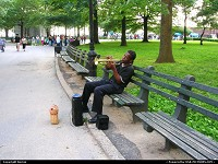 Musician at Battery Park