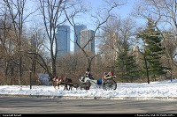 Photo by benoit | New York  central park new york