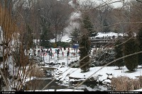 New York : Central Park under snow