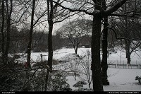 New York : Central park under the snow