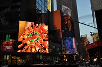 Photo by WestCoastSpirit | New york  times square, jfk, nyc, new york city, neons