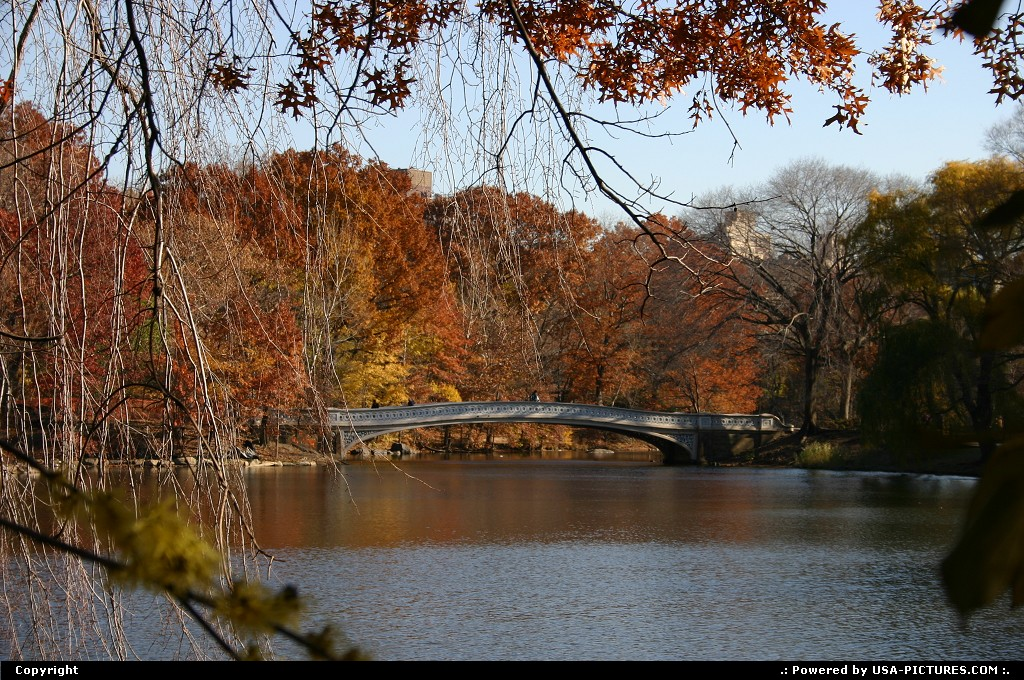 Picture by Mcb74: New York New-york   central park