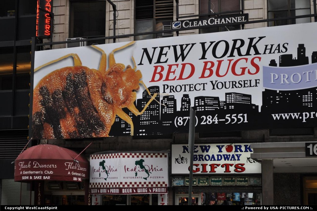 Picture by WestCoastSpirit: New York New-york   bug, bugs, hotel, beds