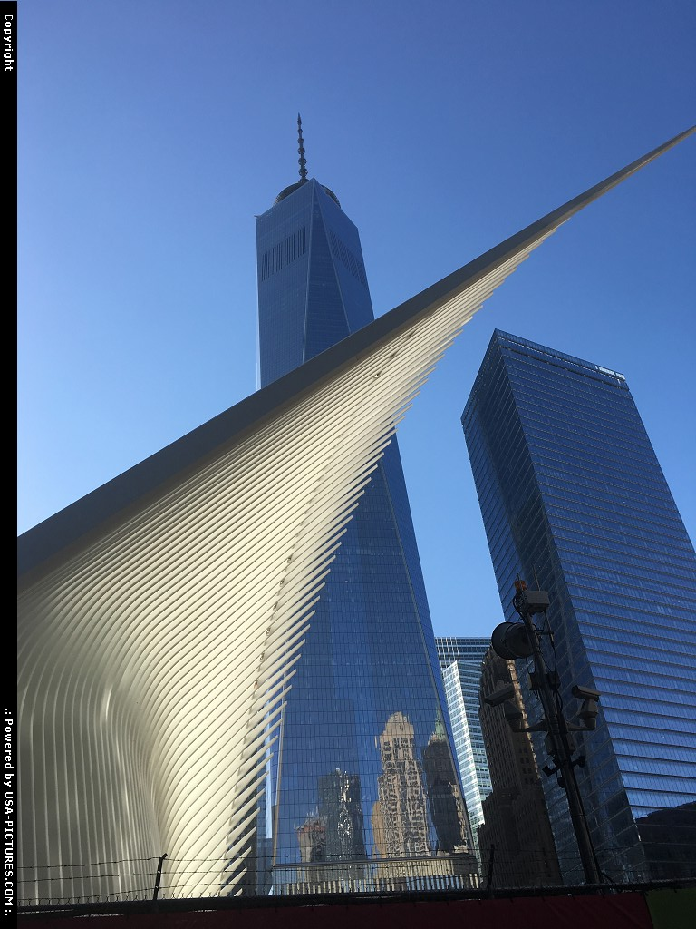 Picture by elki:New YorkNew-yorkFreedom tower New york
