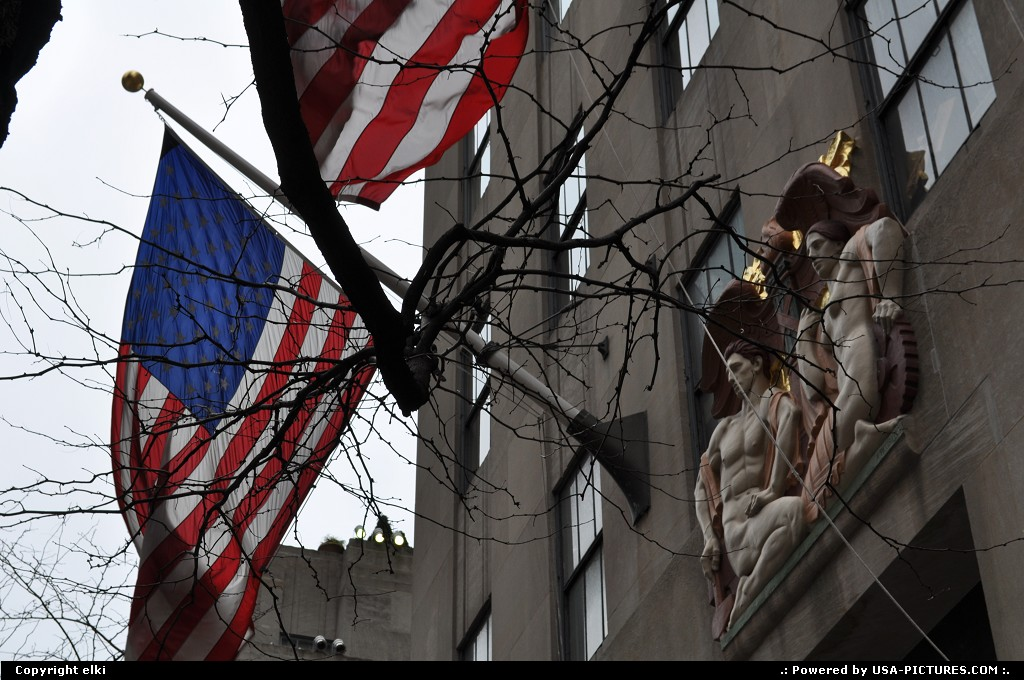 Picture by elki:New YorkNew-york5th avenue