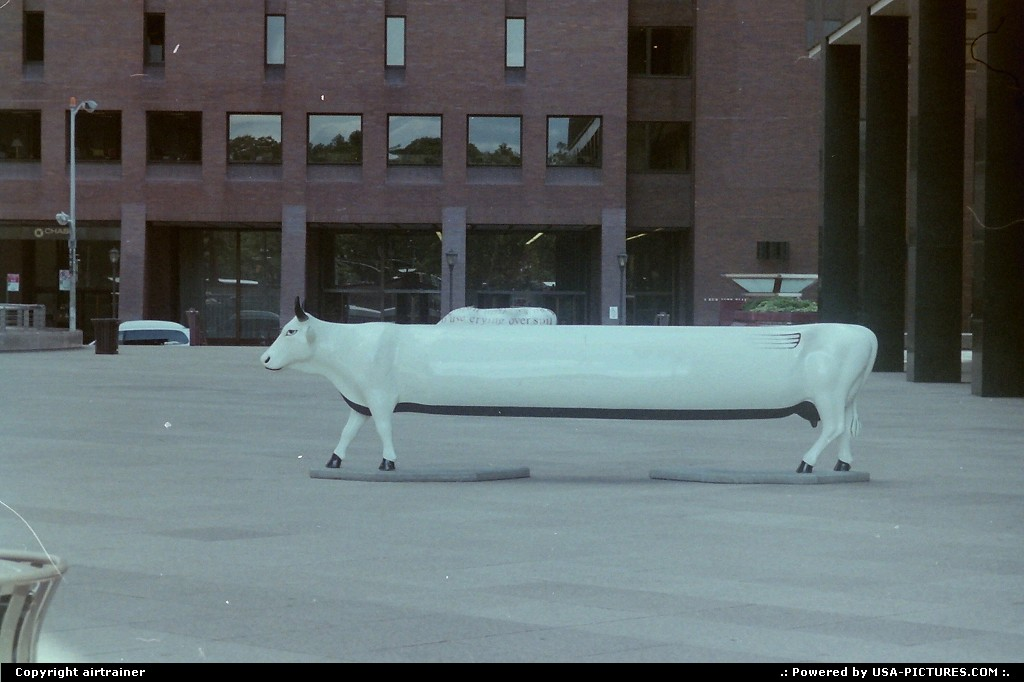 Picture by airtrainer: New York New-york   limousine, cow