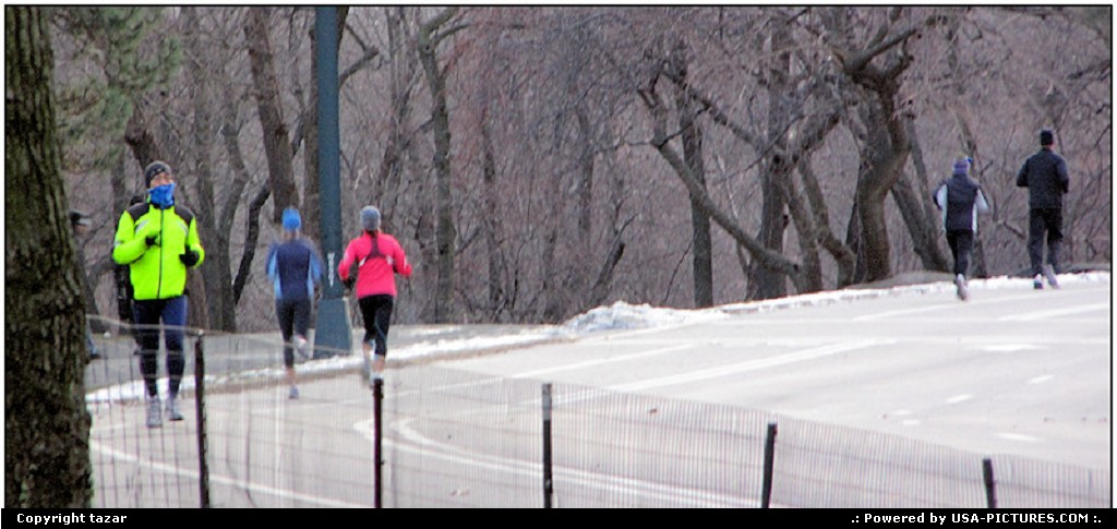 Picture by tazar:New YorkNew-yorkcentarl park,winter