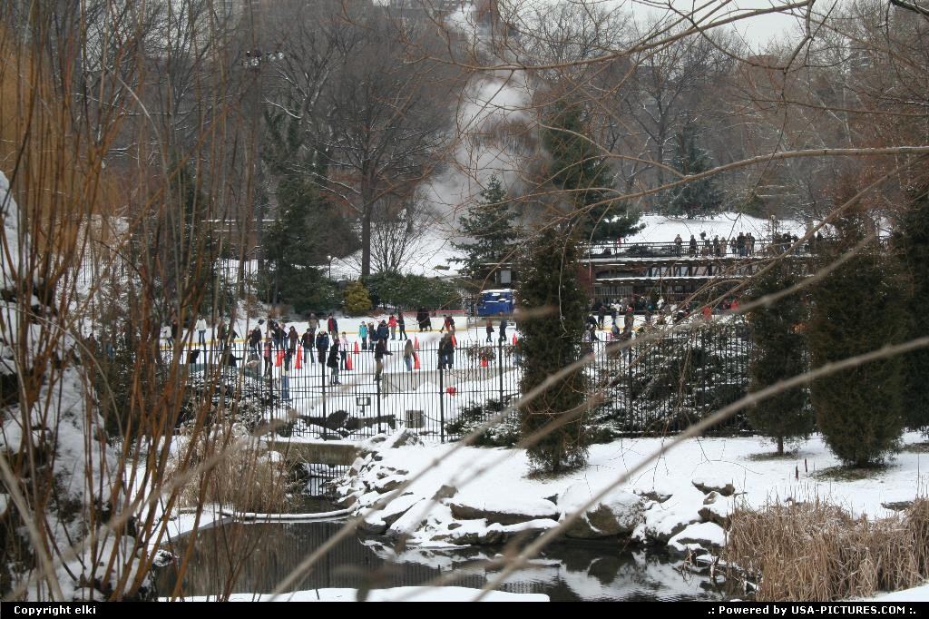 Picture by elki: New York New-york   central park rink snow