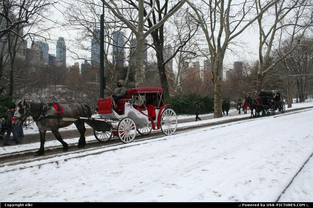 Picture by elki: New York New-york   Central park new york
